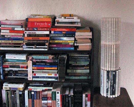 bookshelf081808
